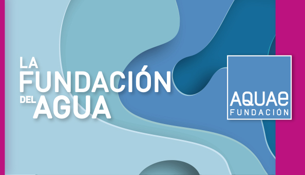 Poster of the Foundation Aquae, fuchsia with waves of distinct blue colours