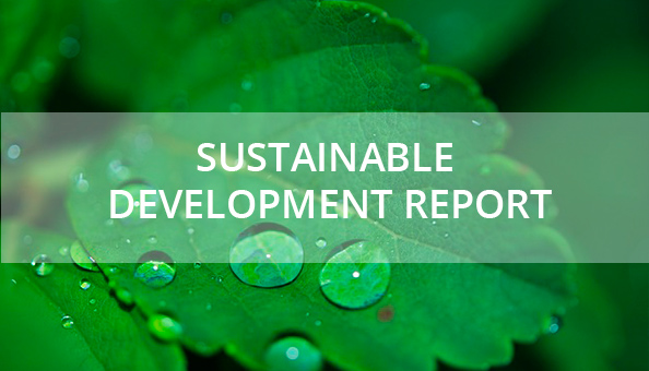 sustainable development report image: plant leaves with water drops